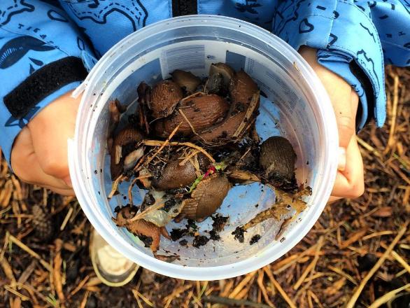 Kind met een potje slakken. Foto: Judith Schoffelen